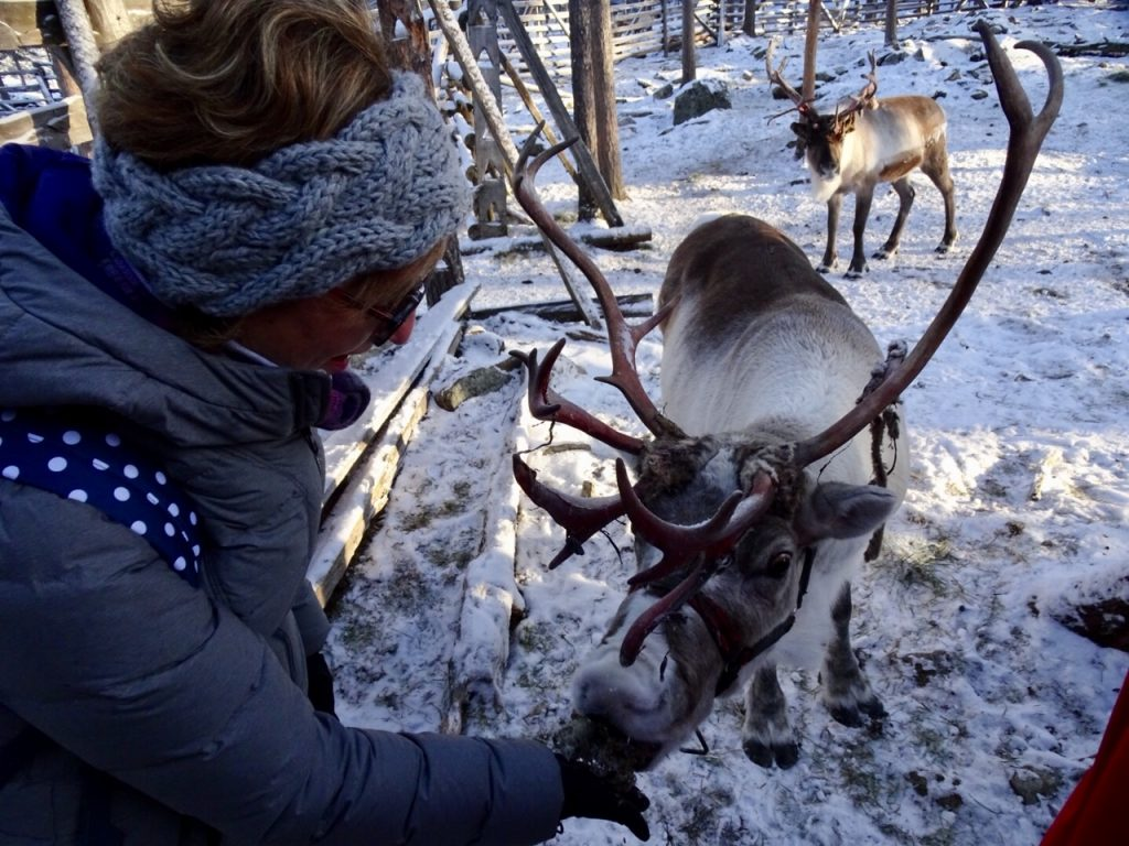 It's Time to Be Merry: Visiting Santa & His Reindeers in Lapland